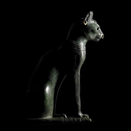 bronskatthel