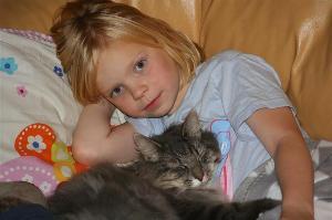 barn_o_katt1