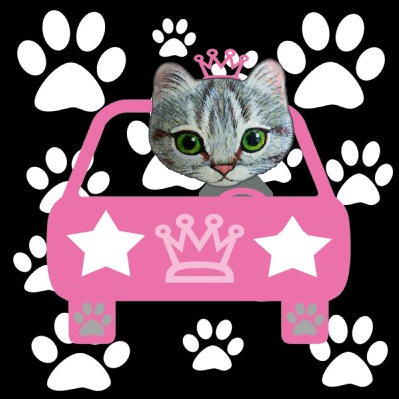 kitty_car