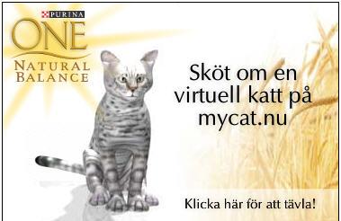 virtuell_katt