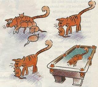 kattbiljard