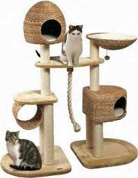 klätterträd till katt