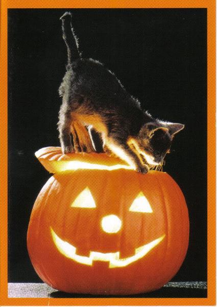 halloweenburn
