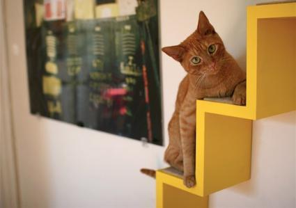 kittyloftathilahigh