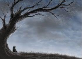 blackcattree