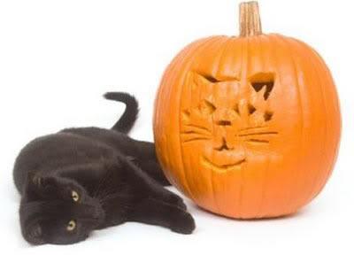 halloweenblackcatjackolatern
