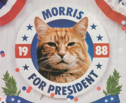 morris_pres
