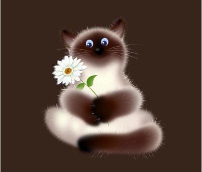 blomkatt1