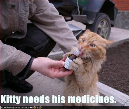 funnypicturescatneedshismedicine