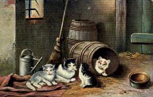 barn_cats