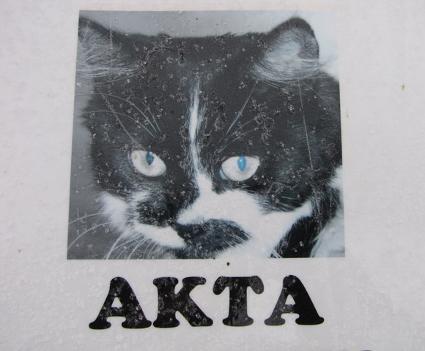 katt_b5