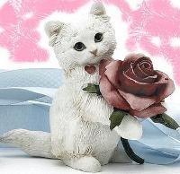 cat_with_rose