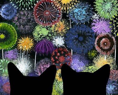 catfireworks