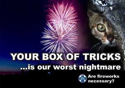 spca_fireworks_poster_cat1