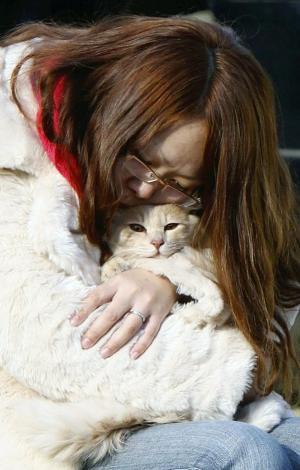 jap_loved_cat1
