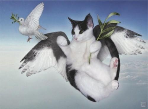 angelcat