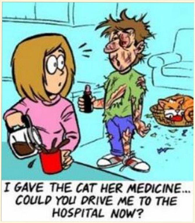 cartoon-cat-medicine[1]