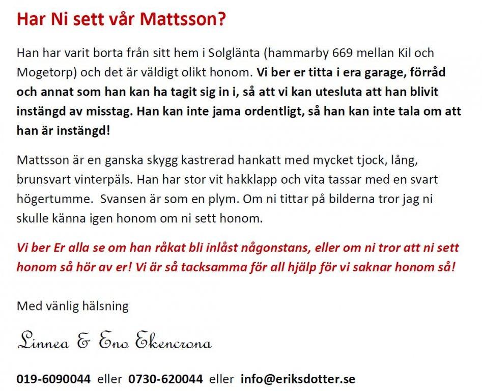 mattsson2