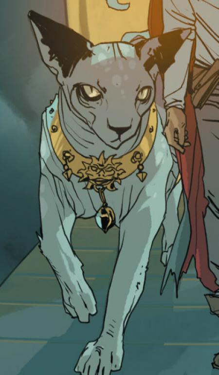 lyingcat1