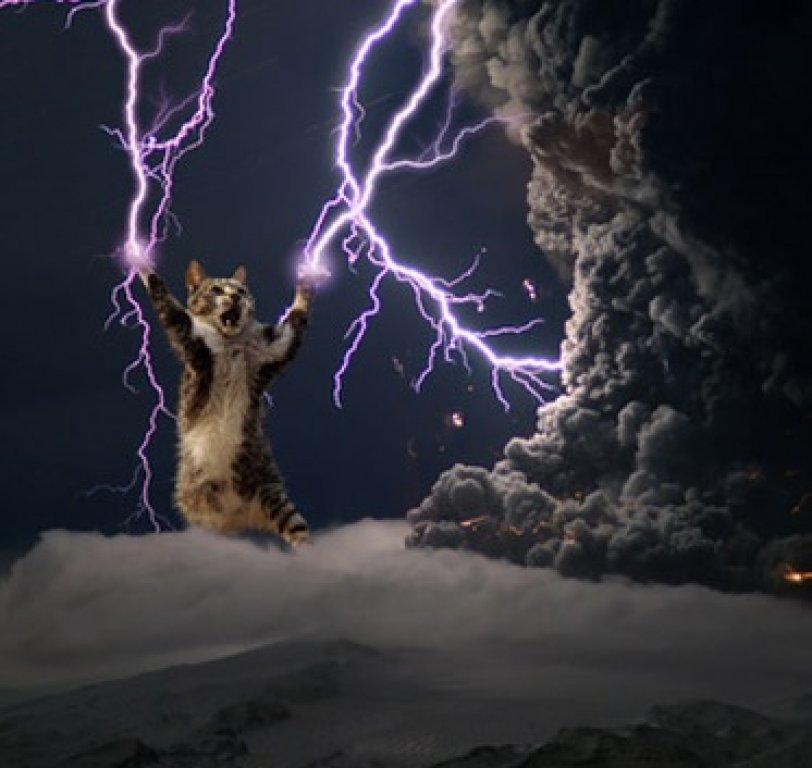 Lightning-Cat
