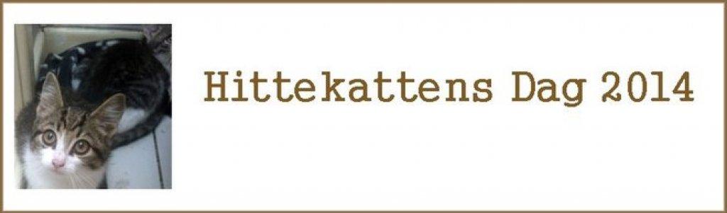 hittekattens-dag-2014