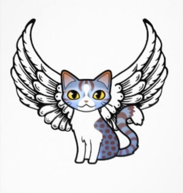 angel my