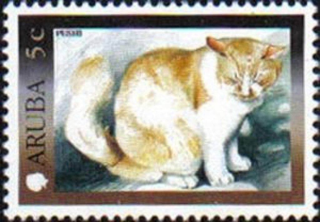 Pets-Cat