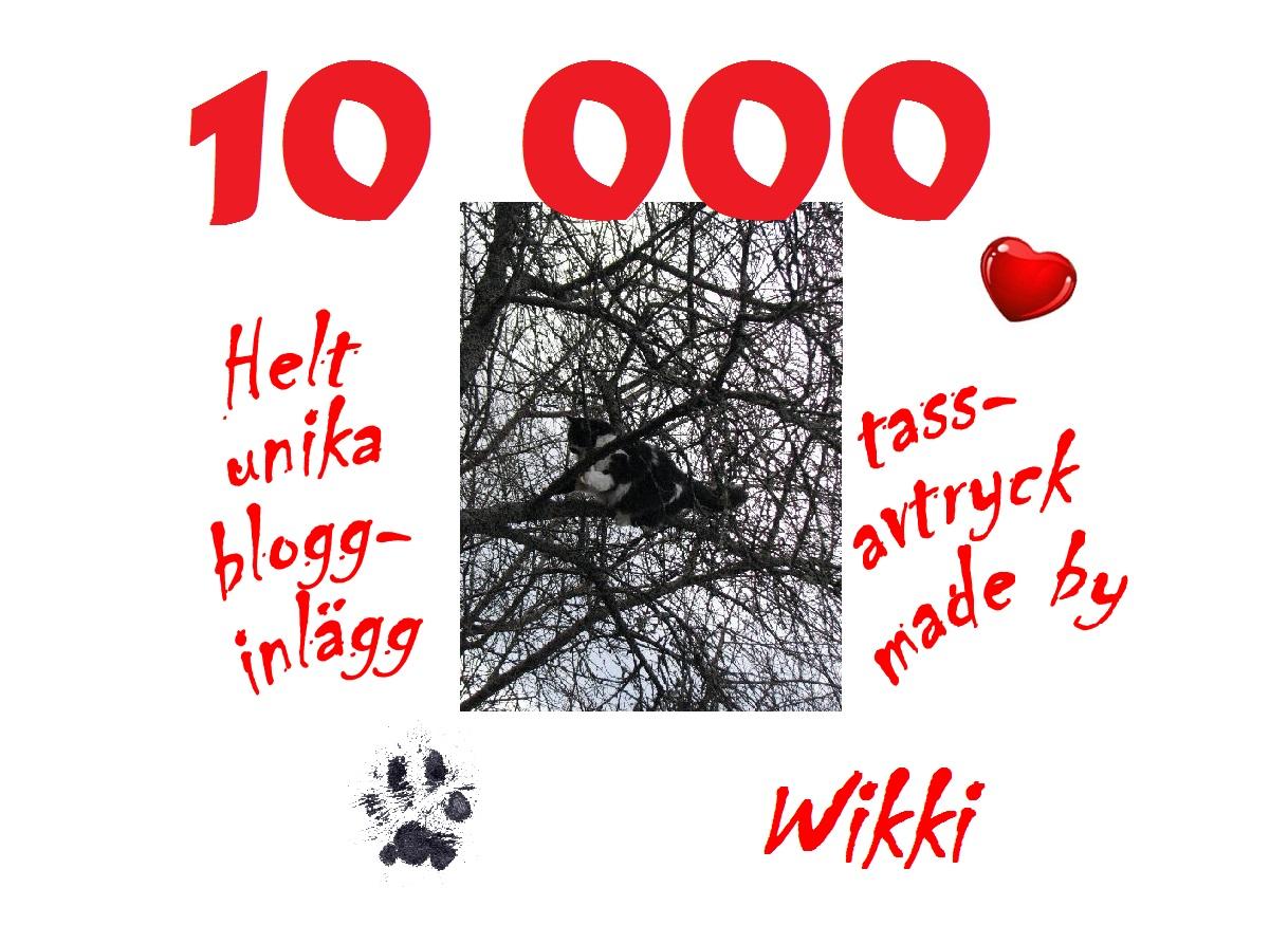 Wikki 10000